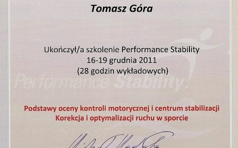 Performance Stability
