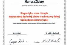 Kinetic Control III – staw biodrowy i kończyna dolna