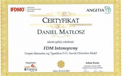 FDM – Fascial Distortion Model
